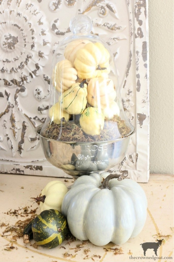 The Easiest Five Minute Fall Vignette with Pumpkins and Cloches-The Crowned Goat
