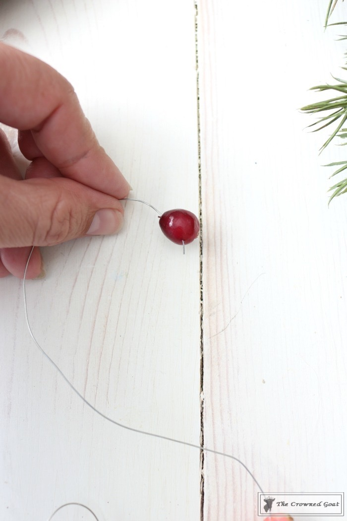 How to Make a Simple Monogram with Cranberries