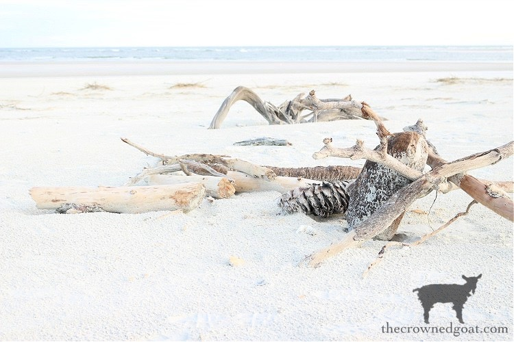 Summer Bucket List Idea - Searching for Driftwood - The Crowned Goat