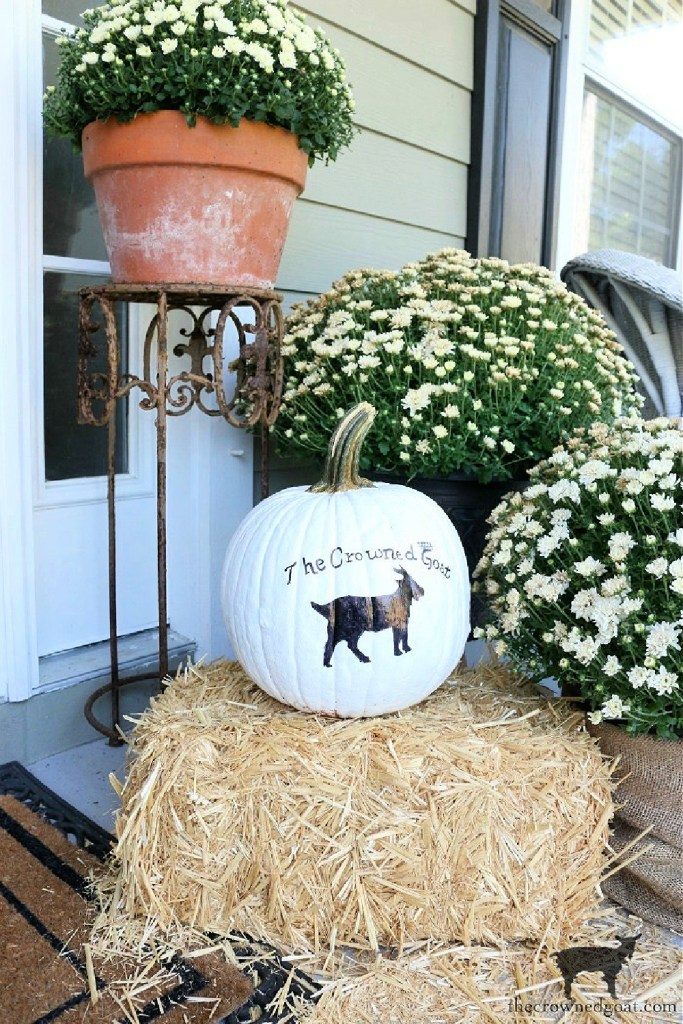 Early Fall Craft and Decorating Ideas-Customize a Pumpkin with Paint-The Crowned Goat