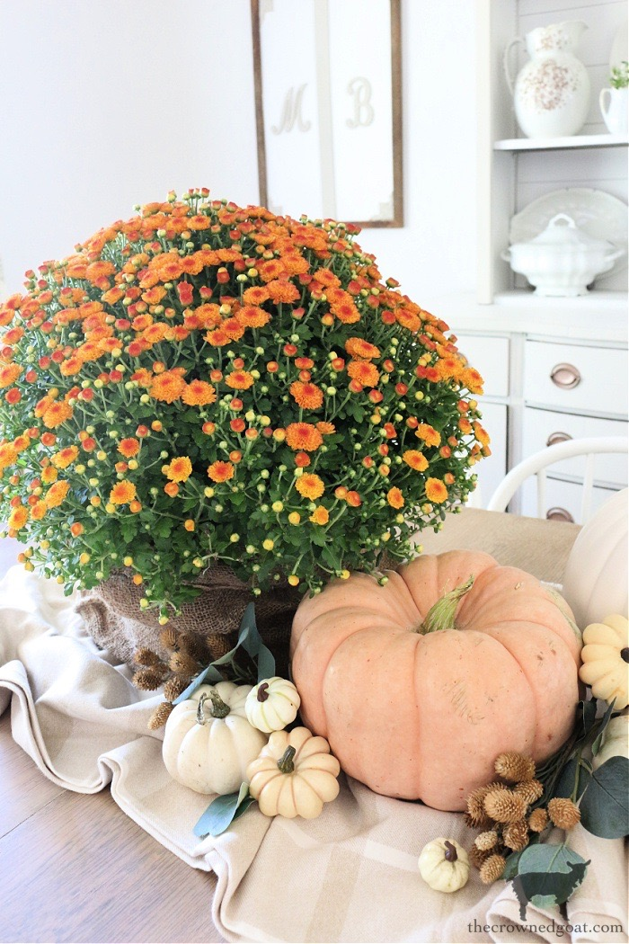 Simple Ways to Celebrate Fall Home Tour