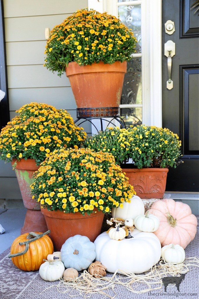 Fall Front Porch Tour-Orange and Yellow Mums with Pumpkins-The Crowned Goat