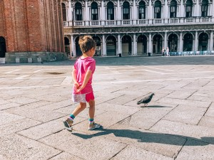 Child Pigeon Venice