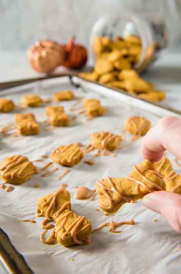Soft Baked Peanut Butter Pumpkin Homemade Dog Treats • The ...