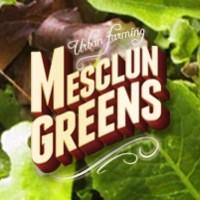 Urban Farming: Mesclun Greens