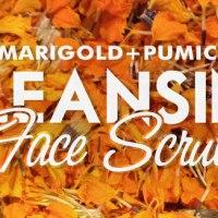 Marigold-Pumice Cleansing Face Scrub