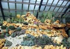 cactus-pabellon-exposicion-jardin-botanico-cuba