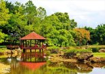 National Botanic garden, plants and water, all nature © Cuba Absolutely, 2014