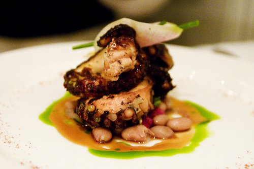 grilled octopus mollusk