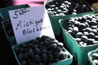 Michigan grown blueberries