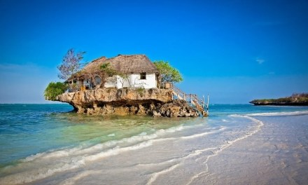 Zanzibar for Foodies