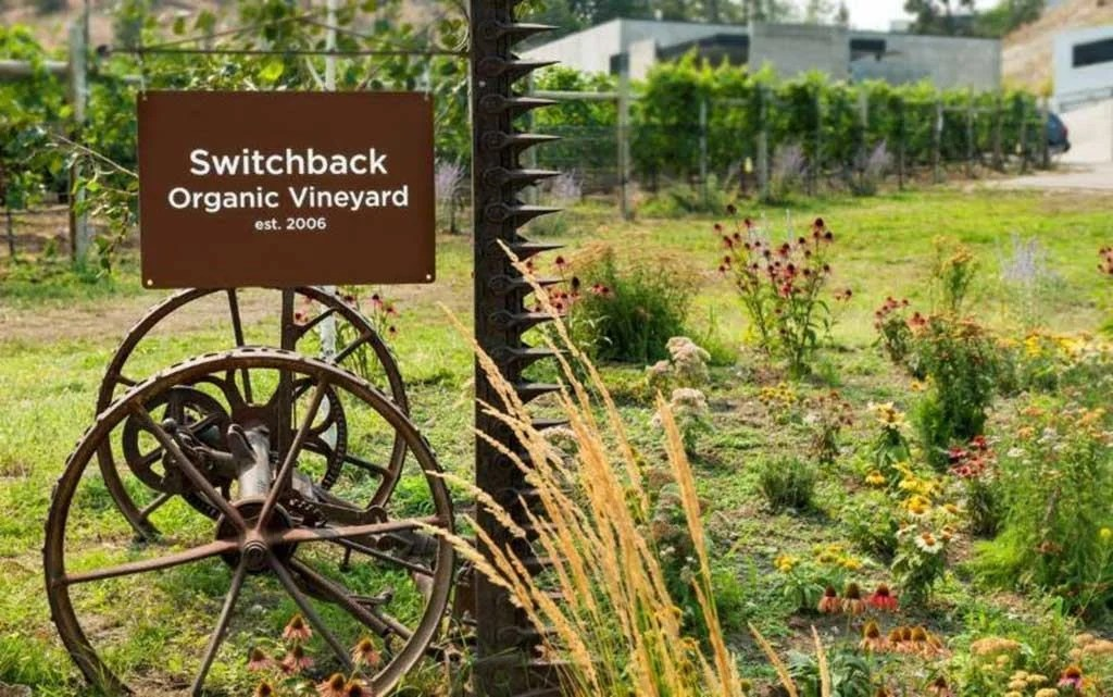Switchback Organic Vineyard, Summerland, BC | TheCulinaryTravelGuide.com