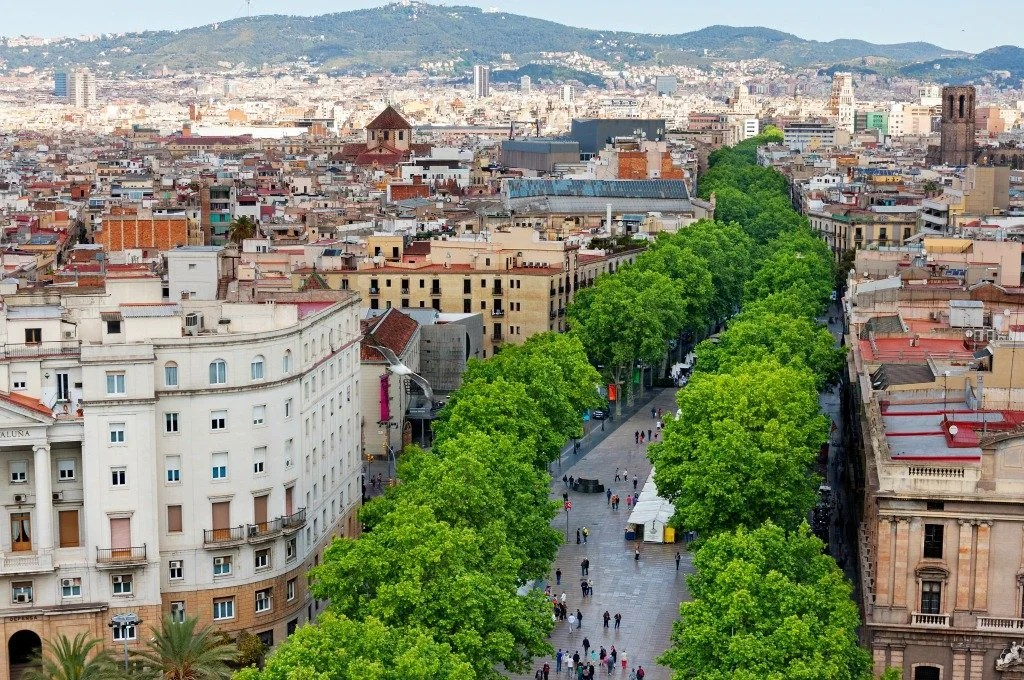 3 Reasons You'll Love 'Eat Local in Barcelona: A Guide to Catalan Cuisine'