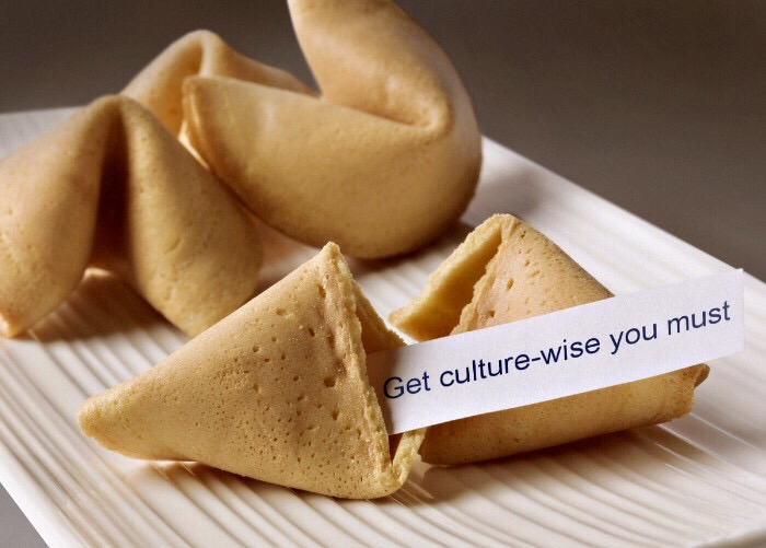 culture-wise CQ ICE-Q cultural intelligence