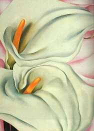 O'Keeffe, Two Calla Lily on Pink, 1928