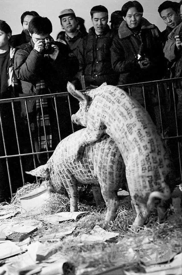 《文化動物》