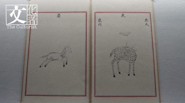 在展覽前端就能看到清乾隆期間修編的《四庫全書》,當中的《本草綱目》。