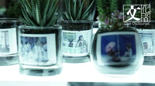 盆栽裝置作品,$800 一盆賣作慈善用途。