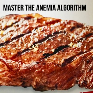 Red meat consumption: an inefficient solution for iron deficiency anemia.