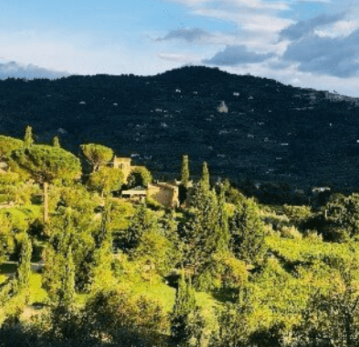 Italian Cooking Vacations:  Il Falconiere