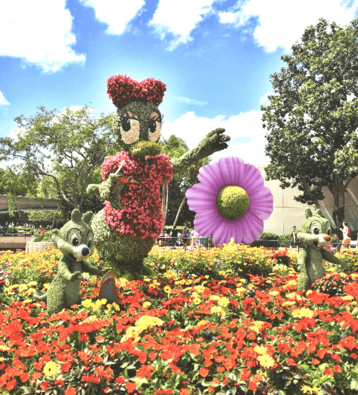 Flower topiary in the shape of Daisy Duck