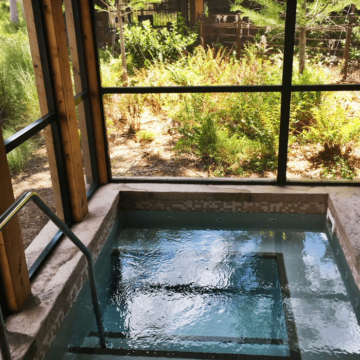 Getting Back to Nature Walt Disney World Resorts hot tub