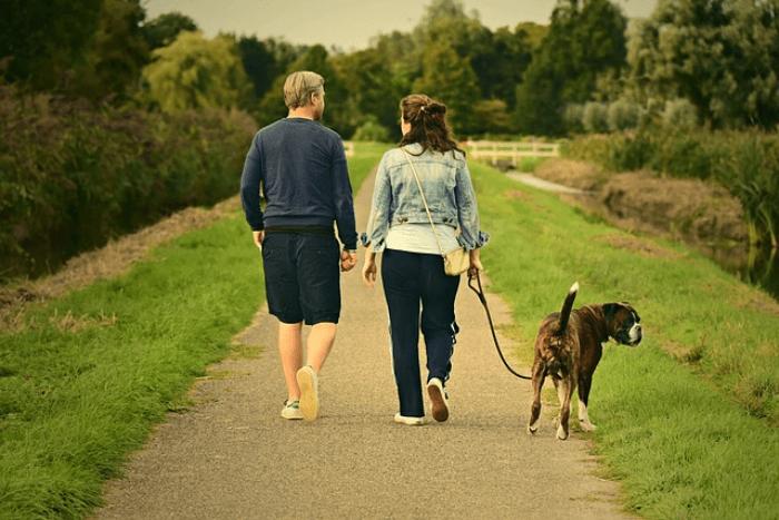 Man and woman walking their dog down a sidewalk