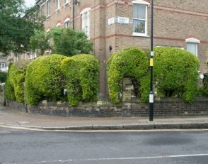 the-curious-gardener-elephant-herds-in-finsbury-park