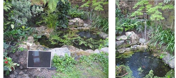 the-curious-gardener-pond-pump-light-working1