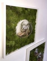 bubble-wall-framesclose1-living-decoration-terrerium-plants-moss-living-wall-office-houseplants-curious-gardener1