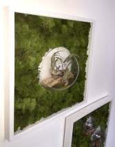 bubble-wall-framesclose1-living-decoration-terrerium-plants-moss-living-wall-office-houseplants-curious-gardener1