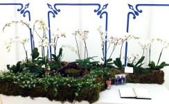 terrariums-london-greenwall-plant-wedding-table-flowers-party-events-curious-gardener-2