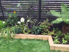 garden design crouch end london (17)