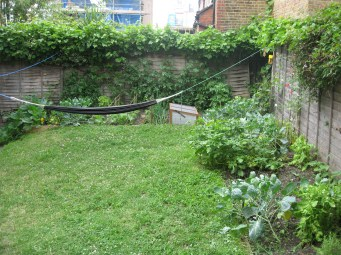gardening in finsbury park london (10)