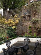 islington gardening services (7)