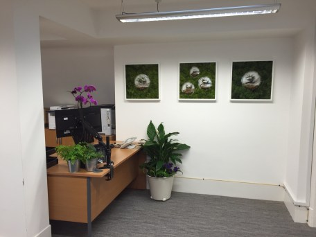 Office in Green Park