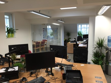 office plants in london - ost (9)
