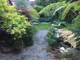 Crouch End Garden Maintenance and Design