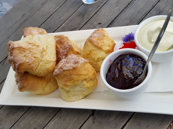 Scones with clotted cream and raspberry jam at Heronswood Garden Cafe, Melbourne