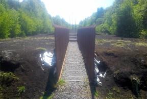 Track through bog - minus dog