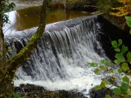 Silver River Waterfall