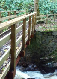 Bridge to the viewing point