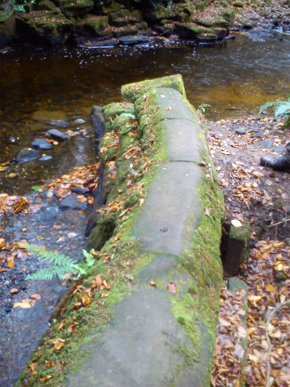 Part of the old weir