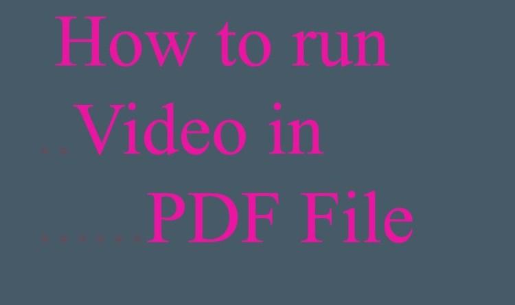 video in pdf file