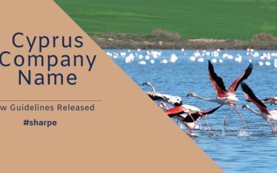 Cyprus Company Name – ROC Guidance