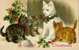 Vintage Kitty Christmas Cards The Czech