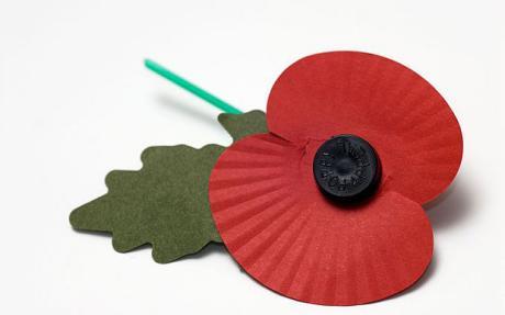 Image result for haig fund poppy