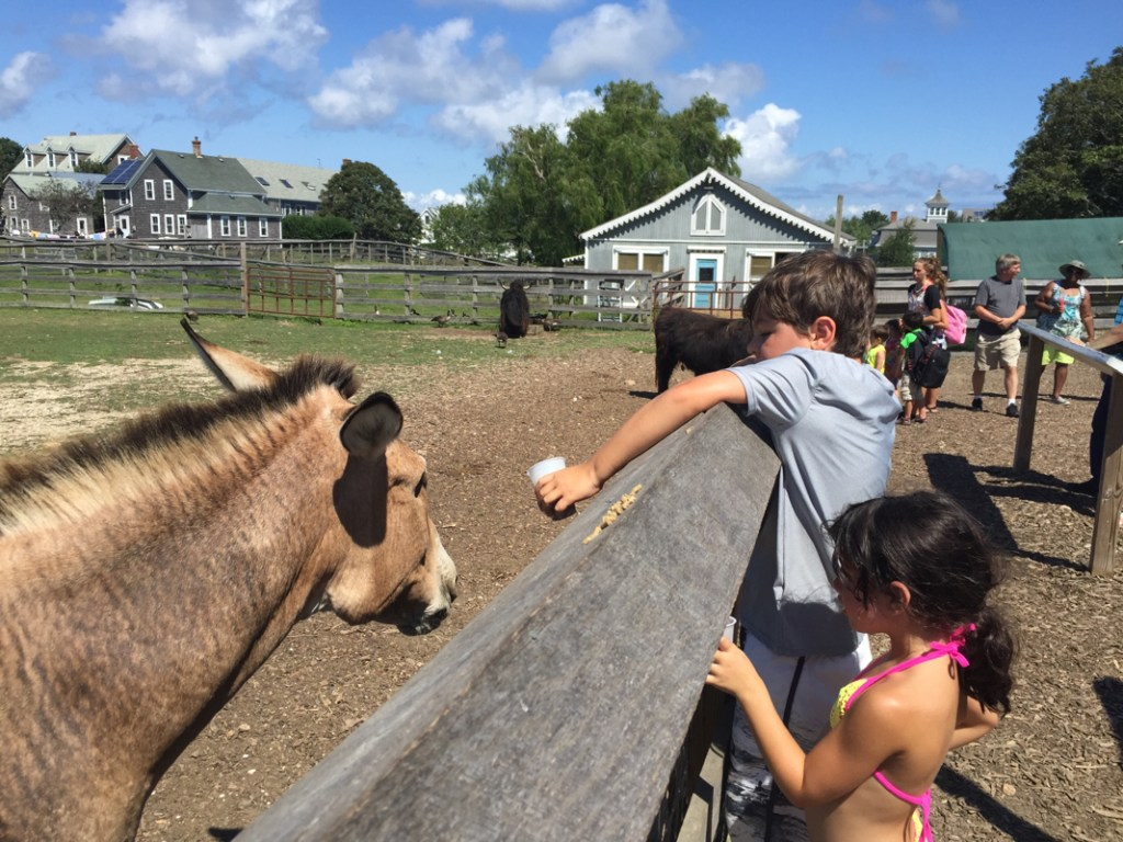 Things to do on Block Island with kids/ Block Island Things to Do