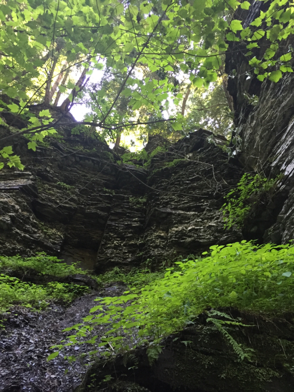 Things to do with kids in upstate New York. Hiking around Ithaca.