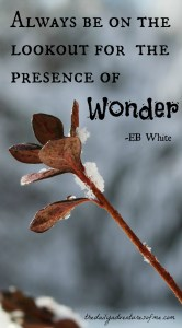 Thursday Travel Inspiration: EB White